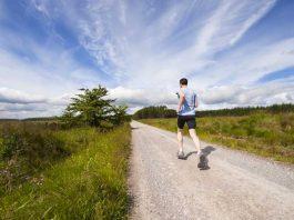 Small business italia for App che ti paga per camminare