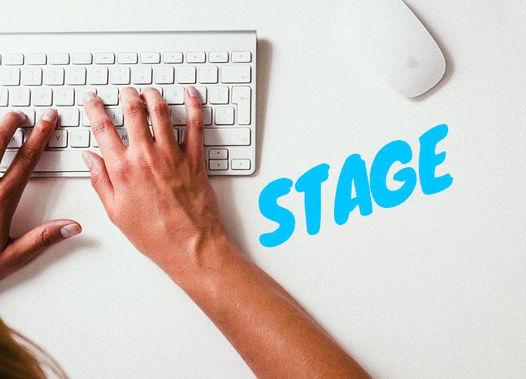 Stage Retribuito